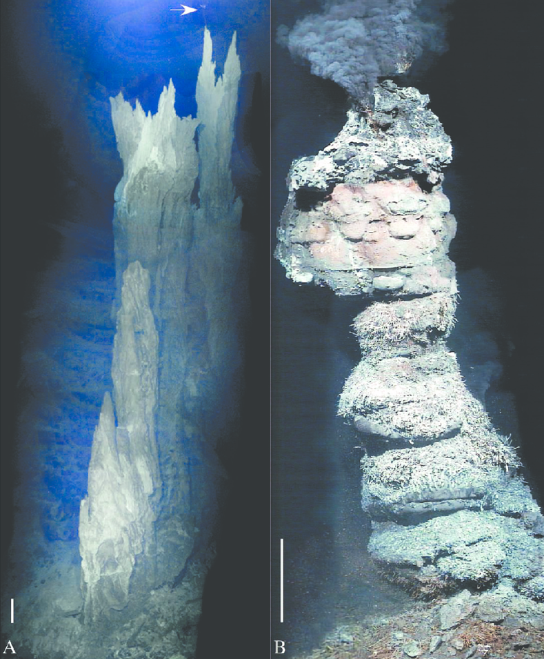 Comparison of an active alkaline hydrothermal vent at Lost City (a) with a black smoker (b)