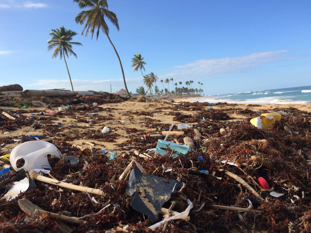 Plastic Pollution is a Real Problem—and It Won't Be Solved by Straw